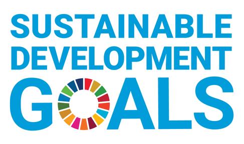 Das Logo der Social Development Goals